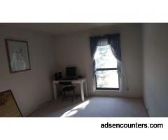 Empty Room Needs Web Cam Action - m4t - 65 - Denver CO